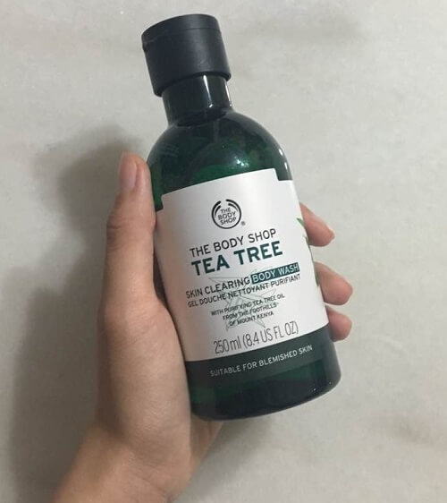 Gel tắm TheBodyShop Chăm sóc body TEA TREE SKIN CLEARING BODY WASH