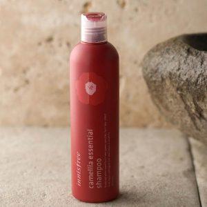 Bạn có biết dầu gội Innisfree Camellia Essential Shampoo